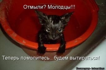 http://nashmir.moy.su/_bl/92/s35111561.jpg